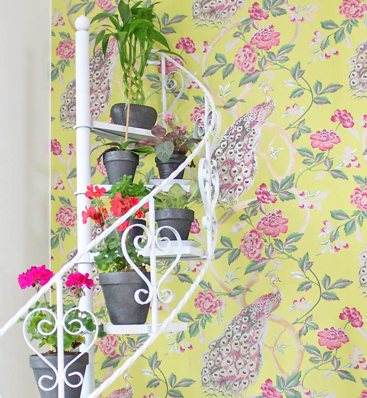 DIY plant stand makeover (and a sneak peek of my new wallpaper!)
