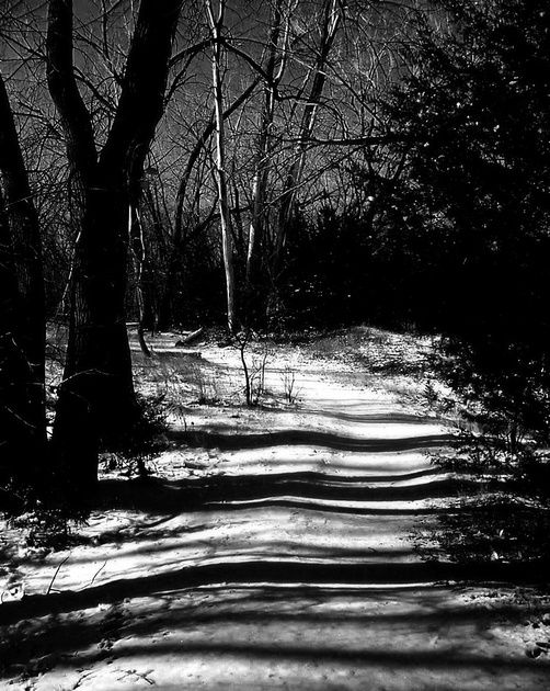 Snow dusted trail