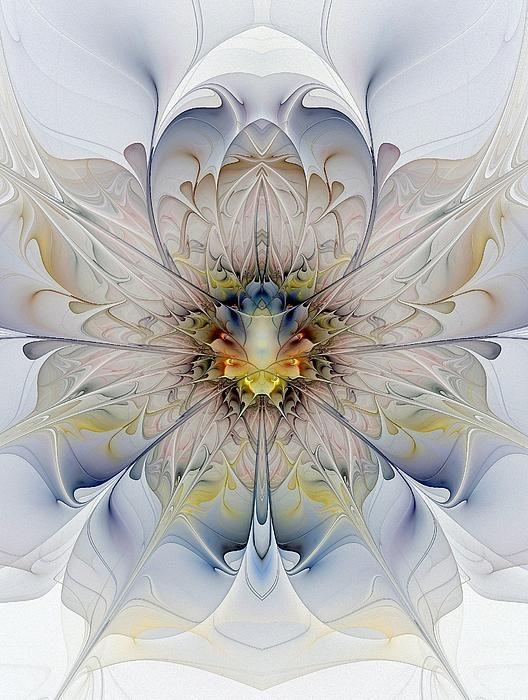 Mirrored Blossom by Amanda Moore