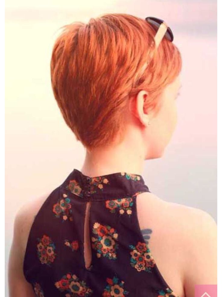 Back of a pixie cut