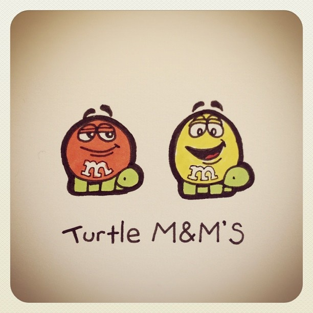 Turtle M's #turtleadayjuly - @turtlewayne- #webstagram