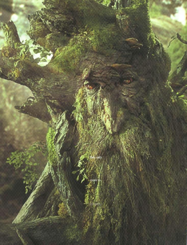дерево из властелина колец фото иронии судьбы