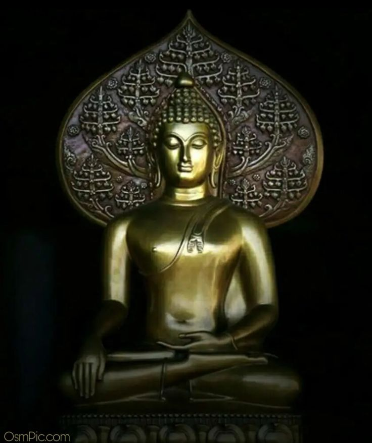 Unique dp of gautam buddha for Whatsapp Buddha image