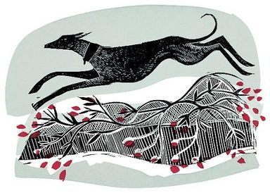 Winter Whippet by Angela Harding, illustration, editorial, print, design, dog, pet, nature, winter, etching, monoprint, printmaking, texture