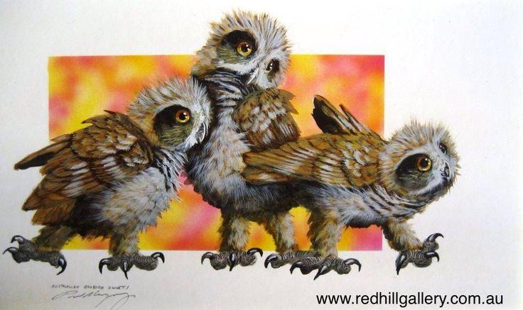 Paul Margocsy 'Down and Dirty, Aus Boobook Owlets' 34x20cm. 61 Musgrave Road, Red Hill Brisbane, QLD, Australia. art@redhillgallery.com.au