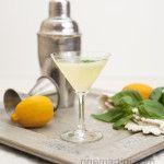 Sand Harbor {a Meyer lemon basil cocktail}