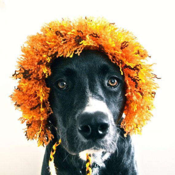 Lion Costume for Dogs  Half Mane  Hand Knit Dog Hat  by bitchknits