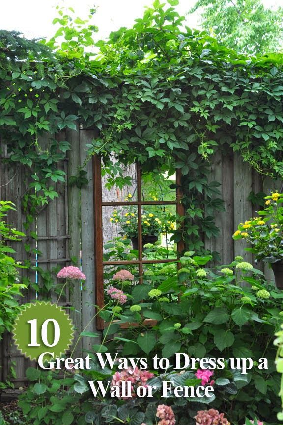 Three Dogs in a Garden: 10 Great Ways to Dress up a Wall  or Fence - Love the idea of using a mirror ( to look like a window) and planting climbers on either side and planting an understorey. What a great idea for a small courtyard.