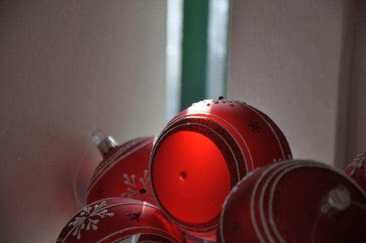 Několik záběrů z letošní Vánoční výstavy, kterou můžete v zahradním centru STARKL v Čáslavi navštívit od 8. listopadu do 23. prosince. Více na: www.starkl.com