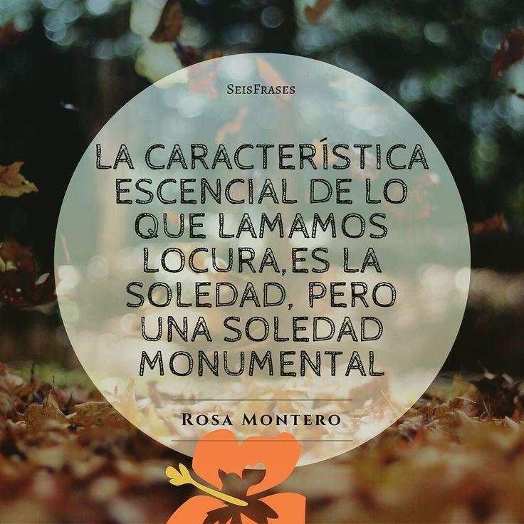 La característica escencial de lo que lamamos locura es la soledad, pero una soledad monumental. Rosa Montero, La Ridícula Idea De No Volver A Verte.
