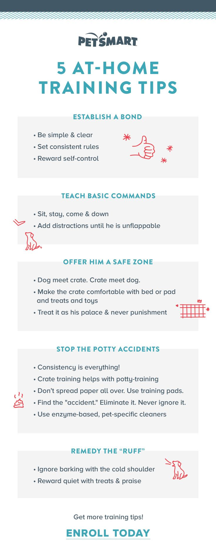 Make puppy-parenting a breeze by mastering these 5 at-home training tips — or leave it to the professionals with PetSmart training.
