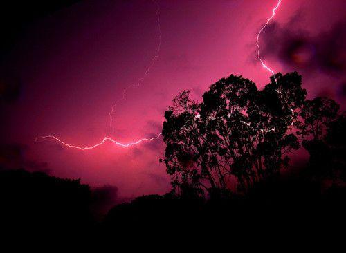 Pink evening skys