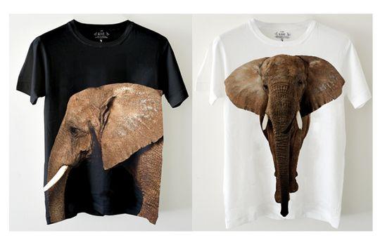 Save the Elephants with Edun - Eluxe Magazine