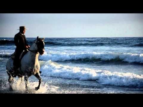 #Yeguada #andalusian #horses #caballos #PRE #castaños #tordos #baja california