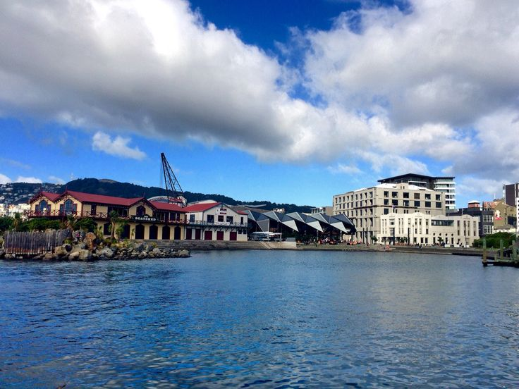 The Oriental Bay