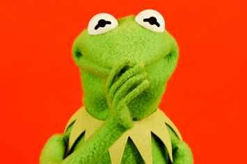 29 Burning Questions, Answered By Kermit The Frog