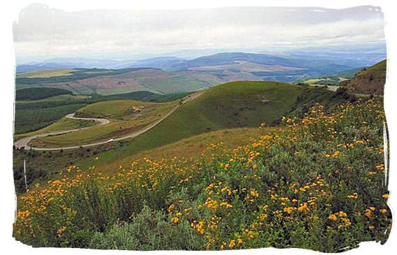 Long Tom pass provincial road in Mpumalanga province
