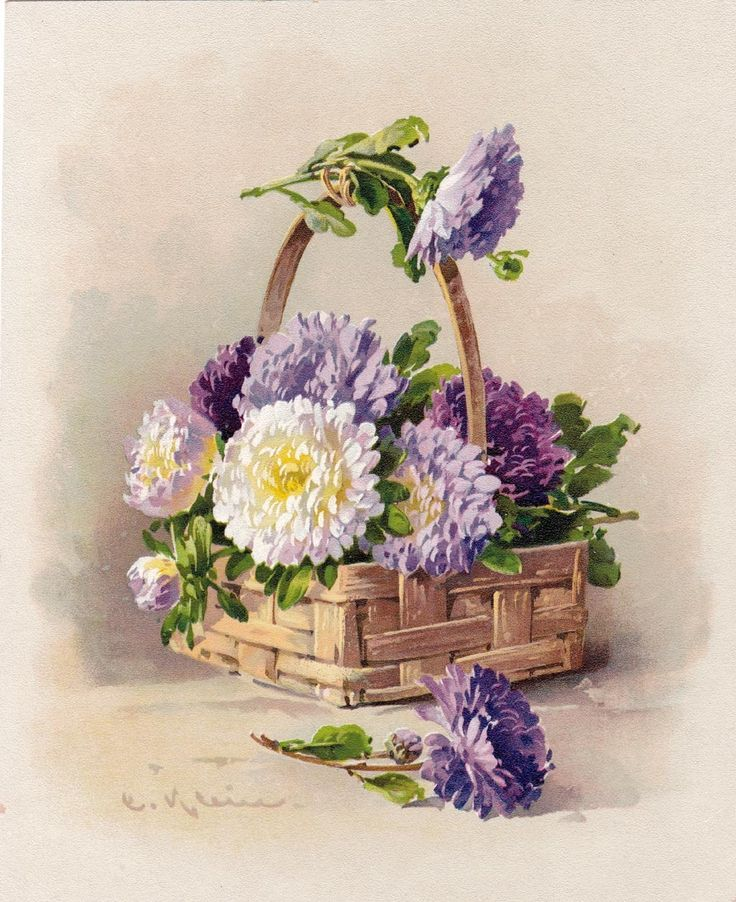 *HOLD for G. Thomas* Catherine Klein Chrysanthemums Print Chromolithograph c1890s  Signed
