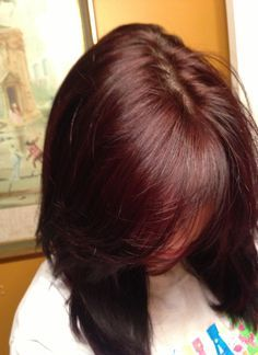 dark brown hair with red tint  softer on the red