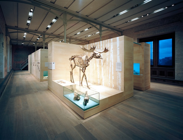 D Printing Exhibition Germany : Best images about exhibit on pinterest