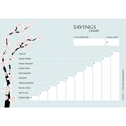 Wipeable Savings Charts available in loads of different designs and colours.