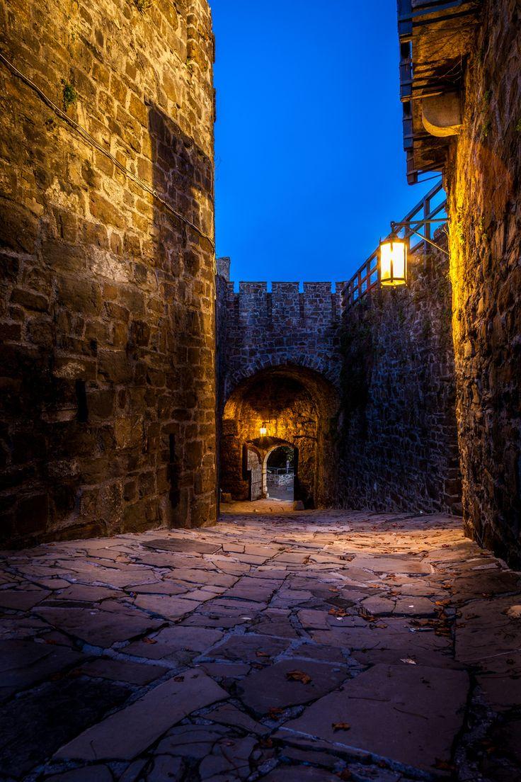 Castello di Gorizia by Stefano Cervellera on 500px