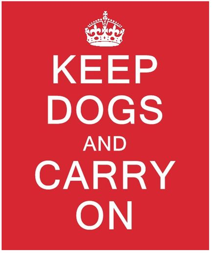 Carry on  #dogquotes  #keepcalmquotes
