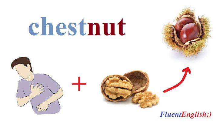 chest + nut = chestnut! (каштан)