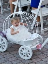 Flower Girl Cinderella wagon I want it!!!!!!!!!