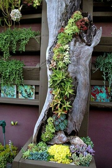 Vertical log garden - I'd just love to do this inside with succulents. Not really an outdoor idea.