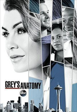 Watch Grey's Anatomy Season 14 Online for Free on Uflixit  #uflixit #fmovies #gomovies #gostream #putlocker #sockshare #solarmovie