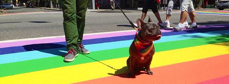 As proud supporters of ‪#‎VanPride2013‬, we are looking forward to all the festivities that this year's Pride will bring to the city — including the brand new sidewalk on Davie and Bute. ‪#‎monkeyyvr‬