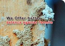 Better Termites Treatment Bangalore