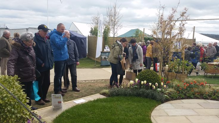 Transition Garden Silver-Gilt Medal Harrogate Spring Flower Show 2016