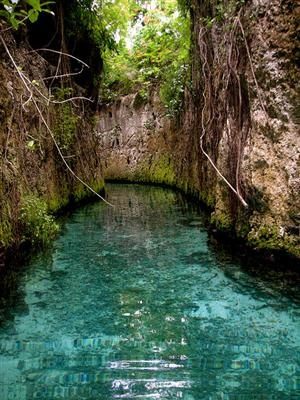.Mexico Honeymoons, Rivers T-Shirt, Places I D, Mayan Riviera, Travel, Amazing Places In Mexico, Honeymoons In Mexico, Underground Rivers, Must See Places In The World