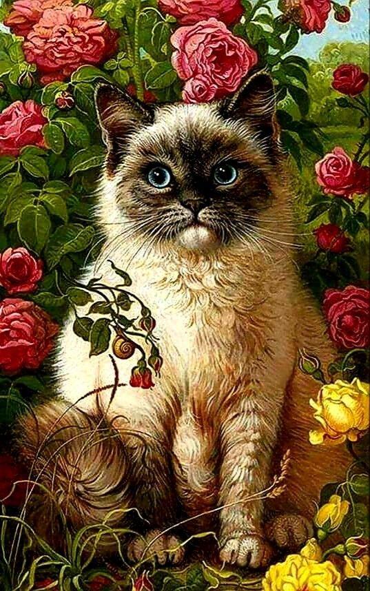 Открытки кошки с цветами, днем рождения