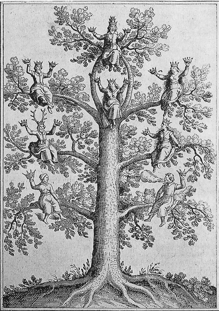 """Tree of Life"" from a book by Johann Daniel Mylius (1628). http://en.wikipedia.org/wiki/Johann_Daniel_Mylius"