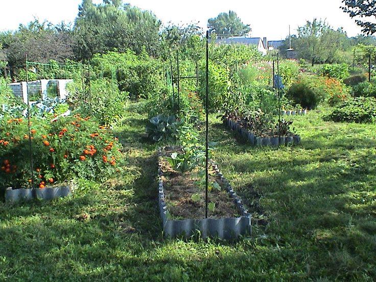 3 урожая в год! - Смешанные посадки