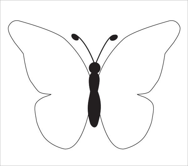 Best 25 Butterfly template ideas