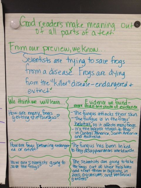 Buzzing with Ms. B: Making Meaning out of Nonfiction
