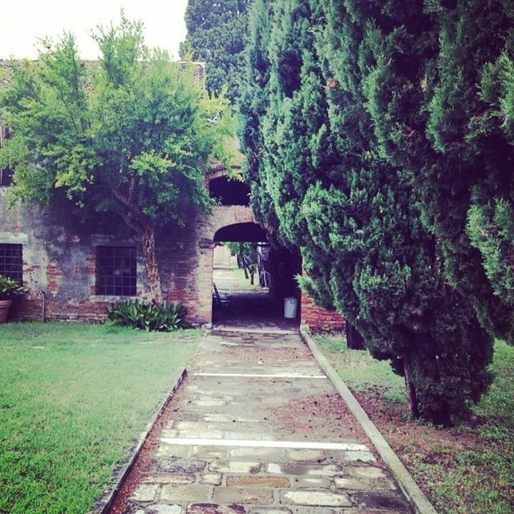 Venice- Franciscan Garden at Redentore