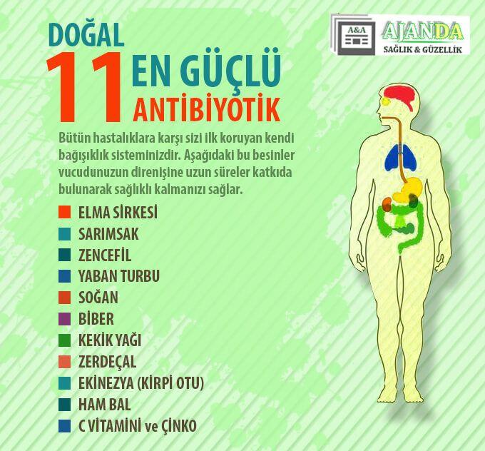Bağışıklık Sistemini Güçlendiren 11 Doğal Besin | Ajan Ajanda