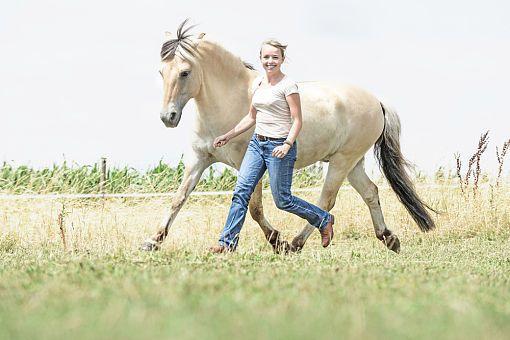 CAVALLO 6 Wege, wie Sie Ihrem Pferd Ihre Zuneigung zeigen