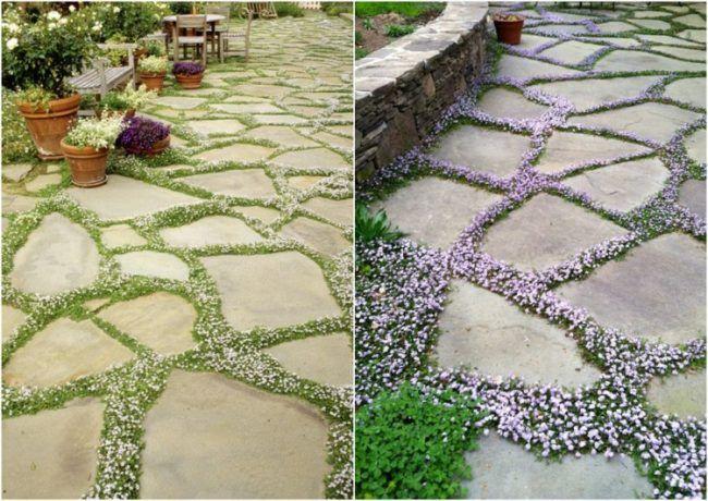 gartengestaltung-guenstig-idee-natursteinplatten-bodenbelag-bodendecker-dazwischen