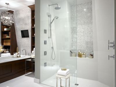 Gallery For Website Master bathroom encased shower area with tub in the background Love the mini tv