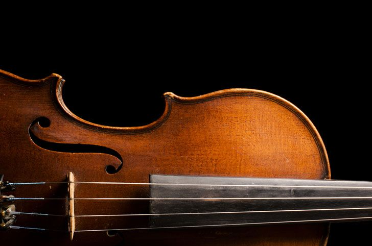 Fungus Can Make a Cheap Violin Sing Like a Stradivarius | Inhabitat - Green Design, Innovation, Architecture, Green Building