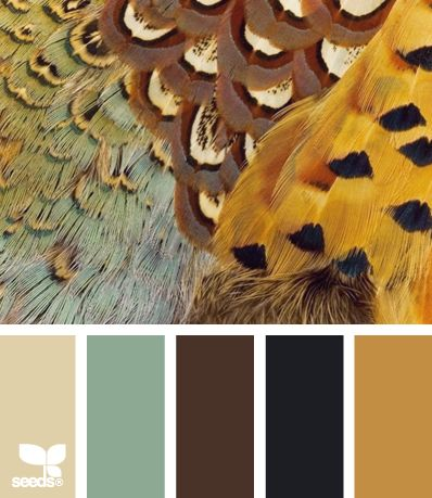feathered autumn tones. cream, jade, brown, black, gold yellow soft light bird hues.