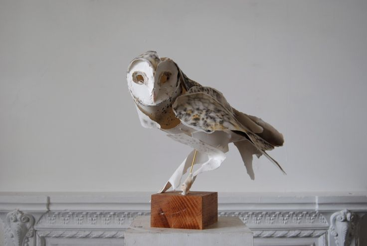 paper owl sculptureArt, Paper Birds, Annawili Highfield, Barns Owls, Paper Sculptures, Paper Owls, Annawilihighfield, Animal Sculpture, Anna Wili Highfield