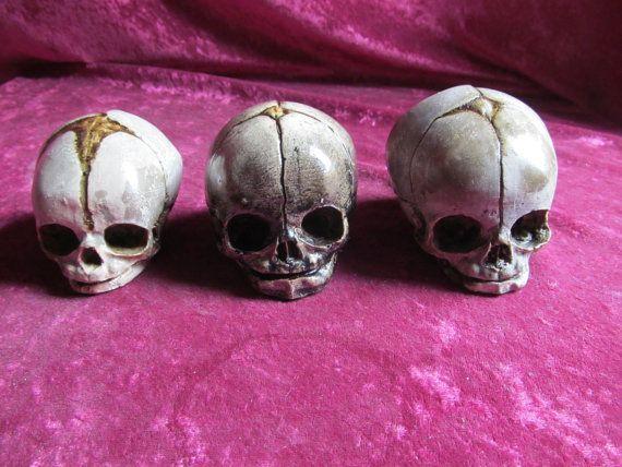 Scelta del cranio fetale a 12 24 36 di shrunkenheaddotcom su Etsy