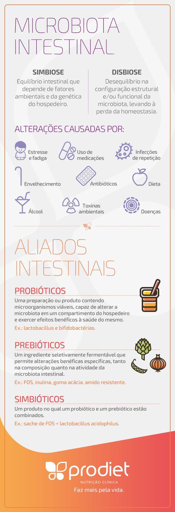 A COMPOSIÇÃO DA MICROBIOTA INTESTINAL E SEUS EFEITOS NA OBESIDADE